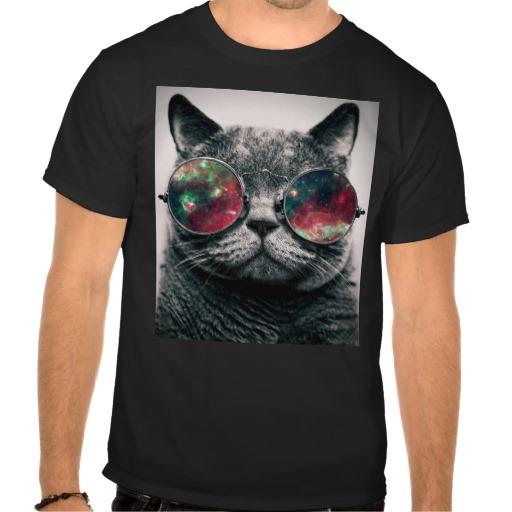 cat_wearing_sunglasses_t_shirt-rcc6ddc6025874a06b277268732f50757_va6lr_512