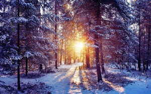 winter_sunset2
